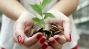 Baum aus Münzen